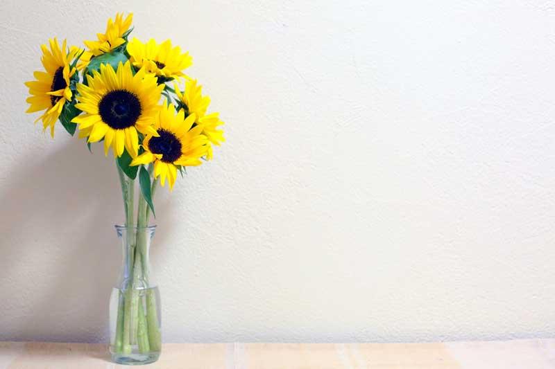 切り花を長持ちさせるコツ